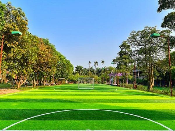 Sân bóng đá số 8 Chu Văn An ở quận Bình Thạnh.